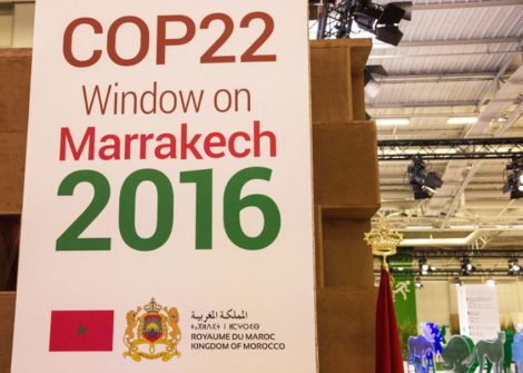 cop22-climateallianceorg-700x500