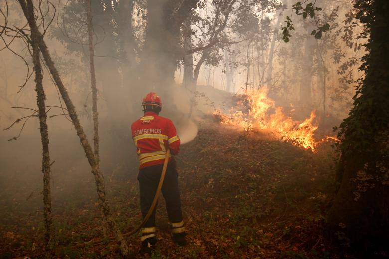 A firefighter tries to extinguish fire during a forest fire near the village of Torgal