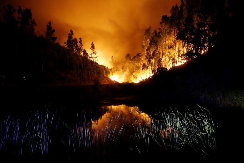 A forest fire is seen near Bouca in central Portugal