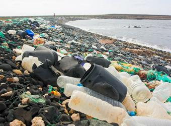 Shoreline full of plastics
