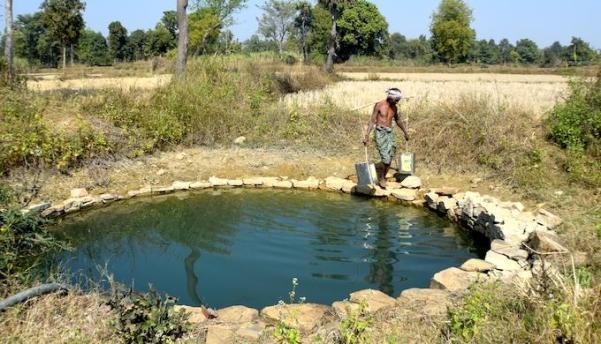 Misin Jal of Pandel village carries water from a dug well to his nearby farm where he is cultivating brinjal (Photo by Basudev Mahapatra)