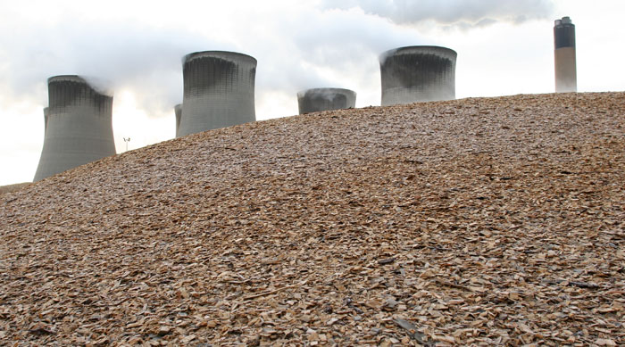1246932_Drax-biomass-1