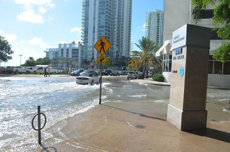 640px-October_17_2016_sunny_day_tidal_flooding_at_Brickell_Bay_Drive_and_12_Street_downtown_Miami,_4.34_MLLW_high_tide_am